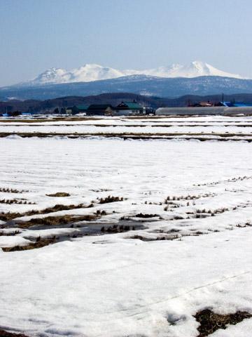 雄渾なる大雪山