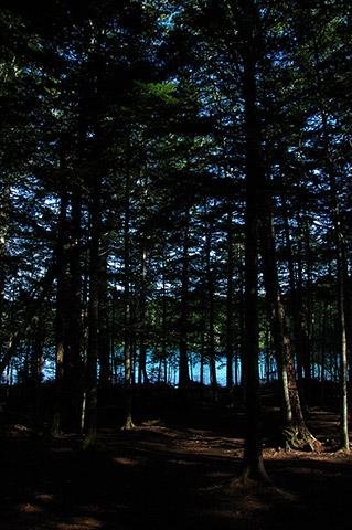 林の向こうの青いみずうみ