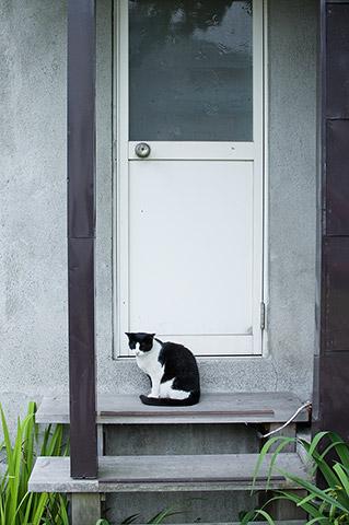 ドアを開けて下され