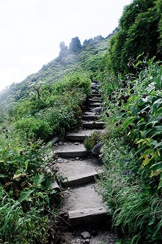 黒岳まではちょっとヤル気の観光客も登ってくるので、整備は行き届いてます。
