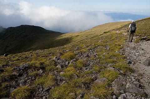 徐々に寂しくなる、大雪北方稜線の尾根歩き。