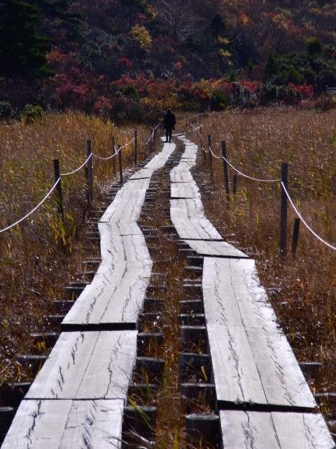 名残ヶ原の木道